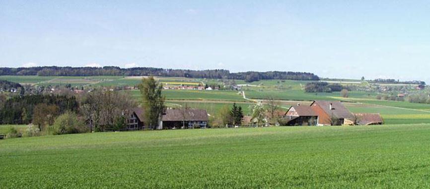 Landmannsbungert2